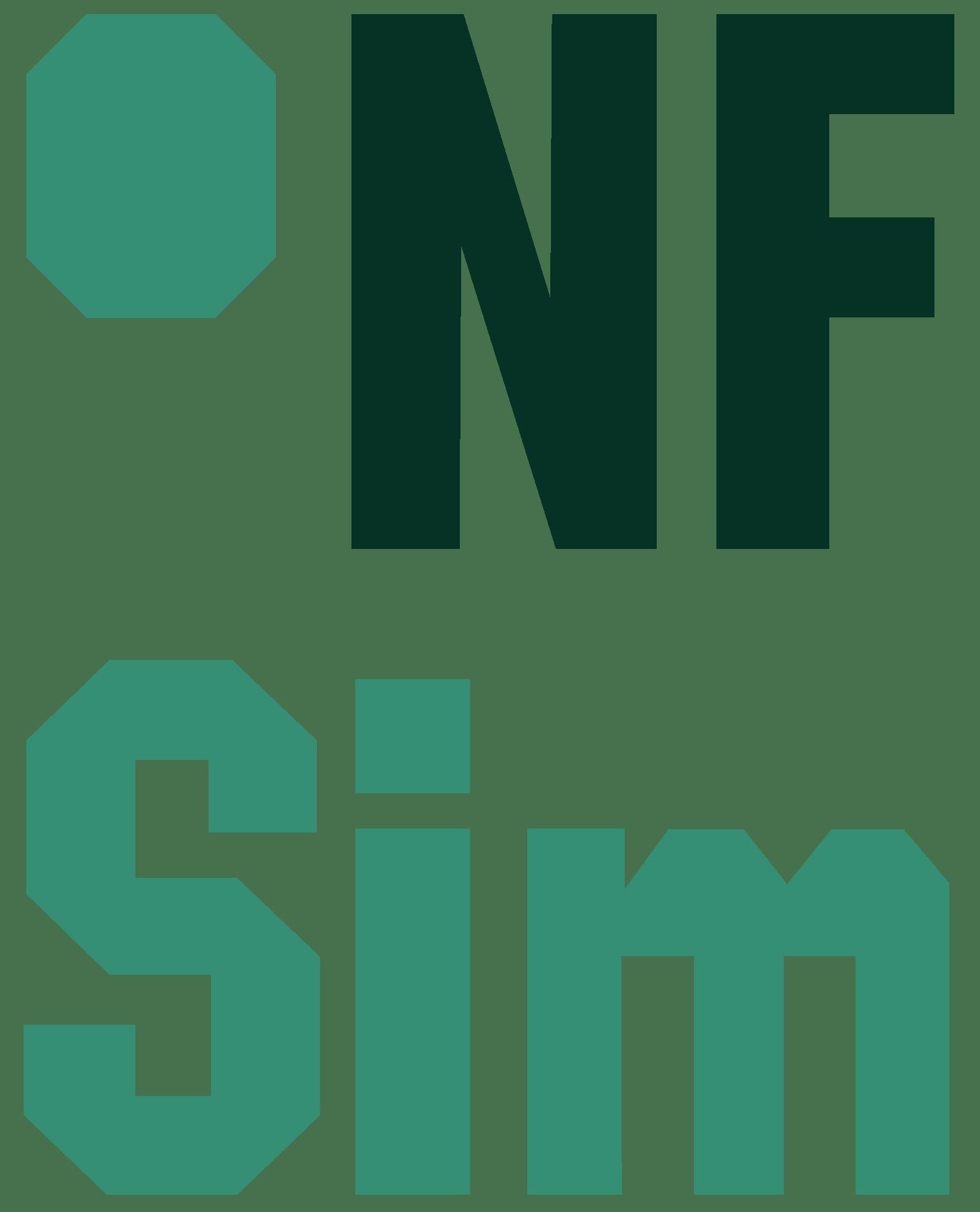 NFSim Logo